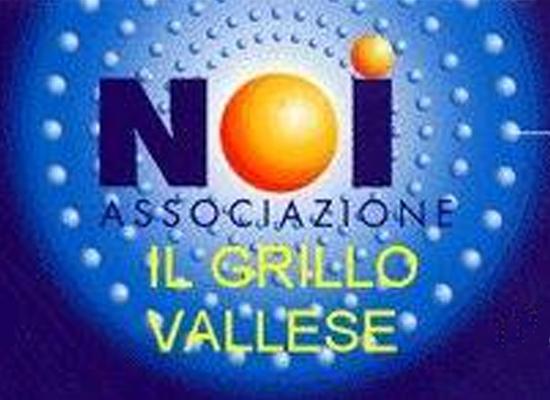 Logo Noi il Grillo Vallese